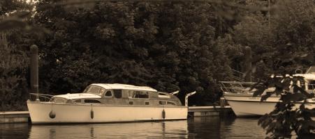 Sepia boat
