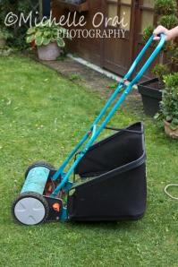 My sister's mower
