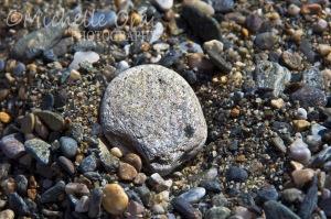 Shiny pebbles